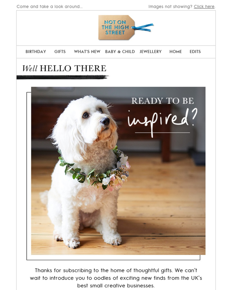 Screenshot of email sent to a Notonthehighstreet Newsletter subscriber