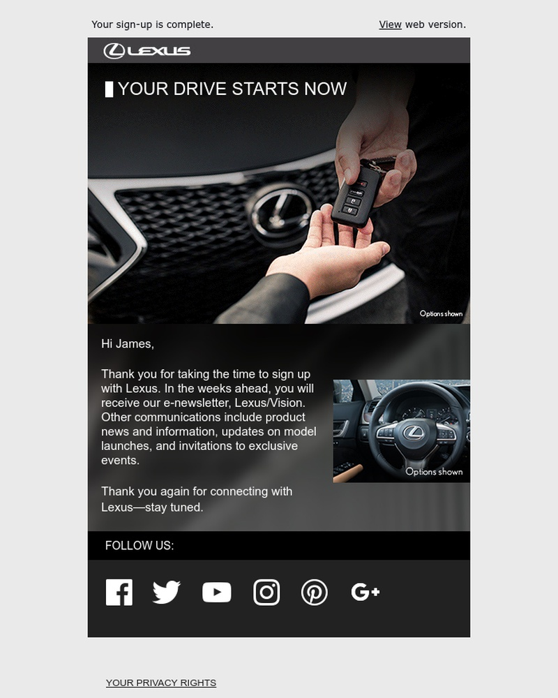 Screenshot of email sent to a Lexus Newsletter subscriber