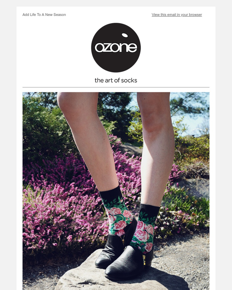 Screenshot of email sent to a Ozone Socks Newsletter subscriber