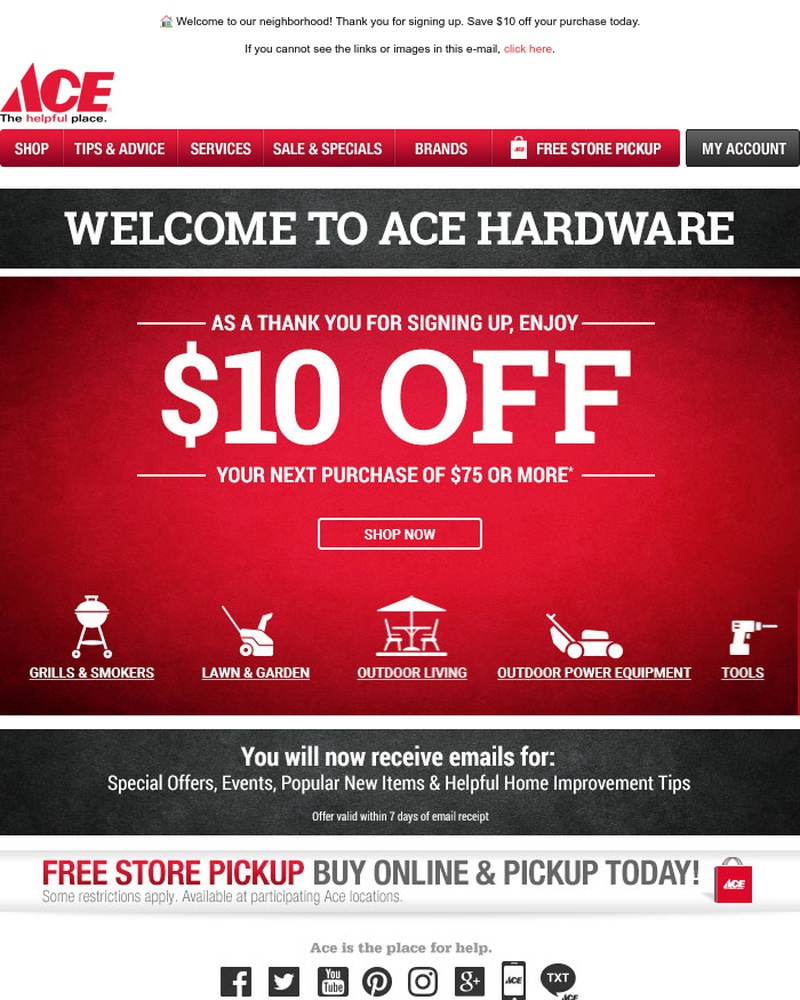 Screenshot of email sent to a Ace Hardware Newsletter subscriber