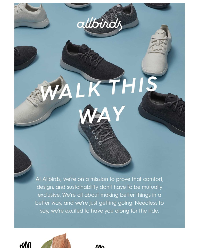 Screenshot of email sent to a Allbirds Newsletter subscriber