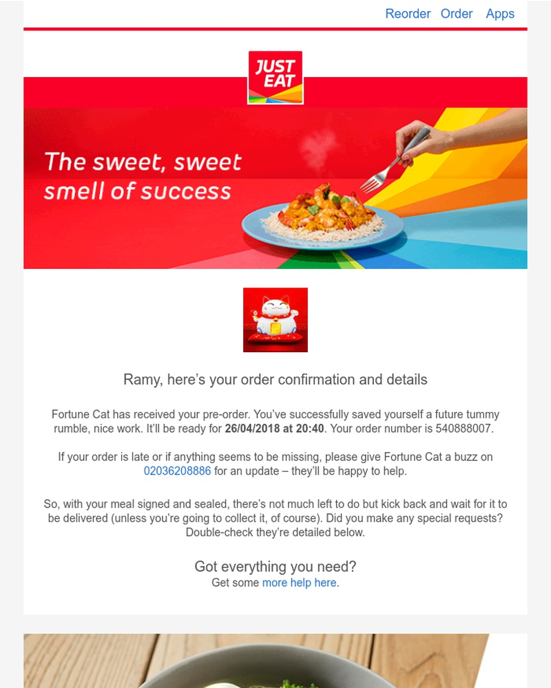 Screenshot of email sent to a Just Eat Customer